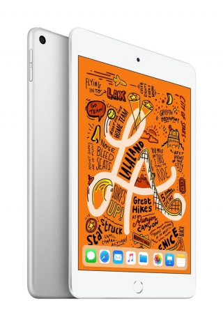 APPLE - iPad mini iPad mini 5 WiFi 256Go - Argent