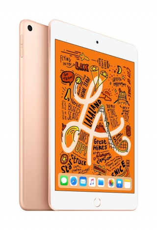 APPLE - iPad mini iPad mini 5 WiFi 256Go - Or