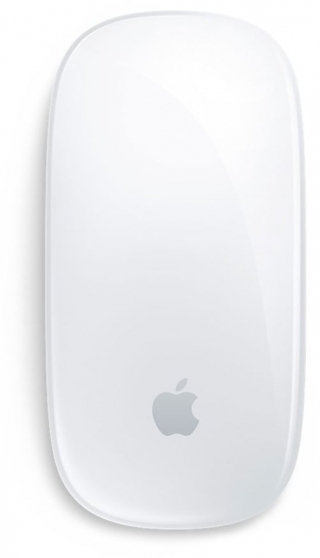 APPLE - Souris sans fil Magic Mouse 2 - Silver
